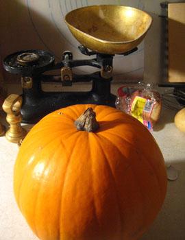 Pumpkin 30.10.09